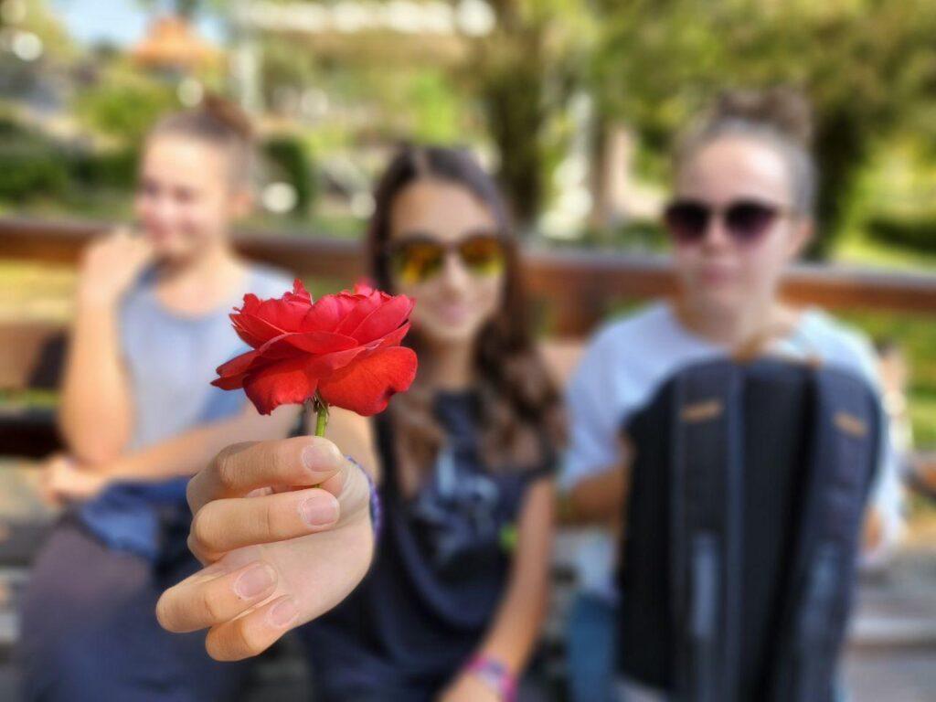 photo_flower_blur